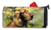 4513?Irish Setter? Robert Abbett